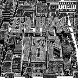 Bild für 'Neighborhoods (Deluxe)'