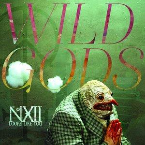 Image for 'Wild Gods'