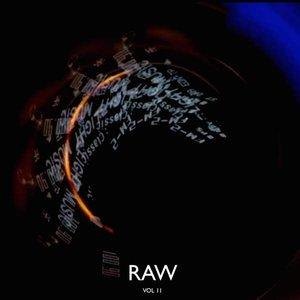 Изображение для 'Raw, Vol. 2 - EP'