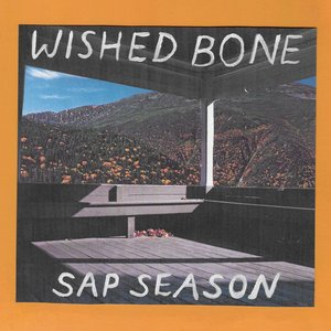 Image for 'Sap Season'