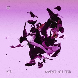 Image for 'Punk's Not Dead: Ambient Rework'