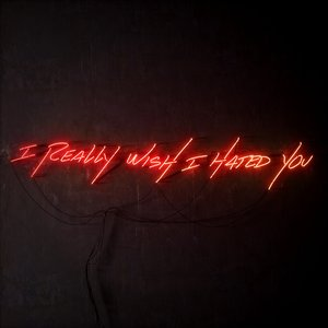 Image for 'I Really Wish I Hated You'