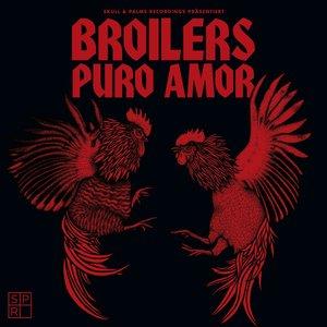 Bild für 'Puro Amor'