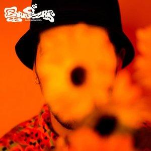 Immagine per 'Banzai (Lato Arancio)'