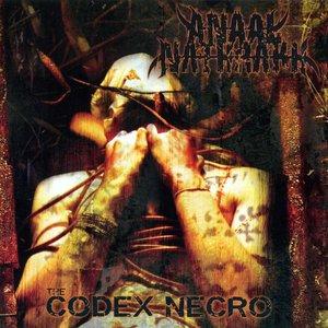 Image pour 'The Codex Necro'