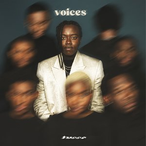 Image for 'Voices'