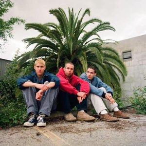 Immagine per 'Beastie Boys'