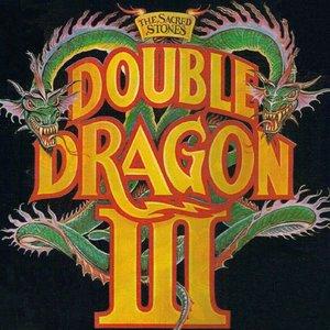 Изображение для 'Double Dragon III: The Sacred Stones'