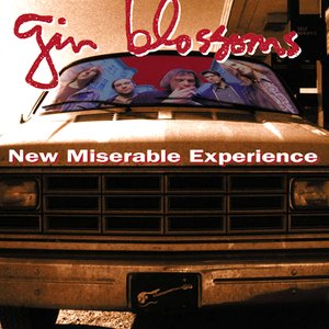 Image for 'New Miserable Experience'
