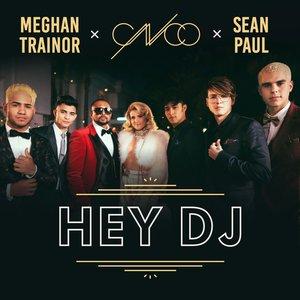 Image for 'Hey DJ (Remix)'