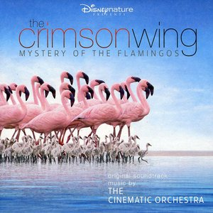Image for 'The Crimson Wing: Mystery of the Flamingos'