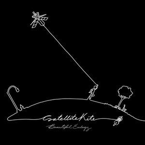 Image for 'Satellite Kite'