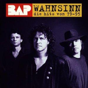 Image for 'Wahnsinn: Die Hits von 79-95'