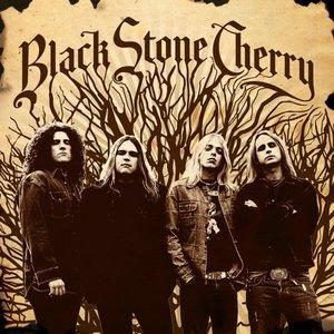 Image for 'Black Stone Cherry'