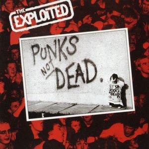 Image for 'Punks Not Dead'