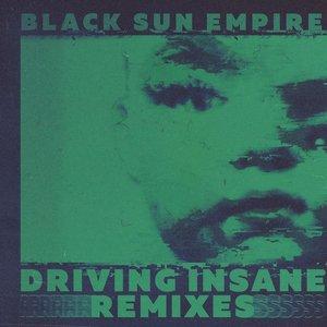 Изображение для 'Driving Insane (Remixes)'