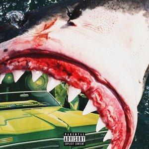 Imagen de 'SHARK REPORT'