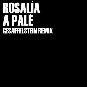 Image for 'A Palé (Gesaffelstein Remix)'