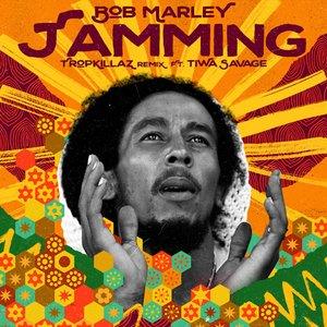 Image for 'Jamming (Tropkillaz Remix)'