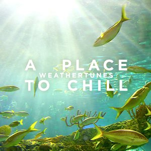 Image for 'A Place to Chill'