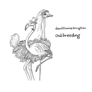 Image for 'Outbreeding'