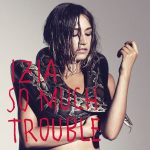 Image for 'So much trouble'