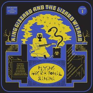 Image for 'Flying Microtonal Banana'