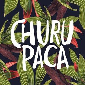 Image for 'Churupaca'