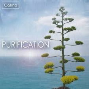 Image for 'Purification'