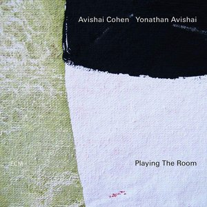 Image for 'Playing The Room'