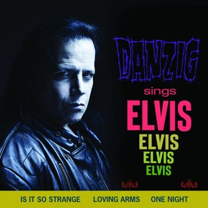Image for 'Sings Elvis'