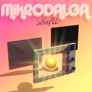 'Mikrodalga Sörfü' için resim