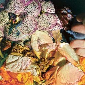Image for 'Genuine Silk'