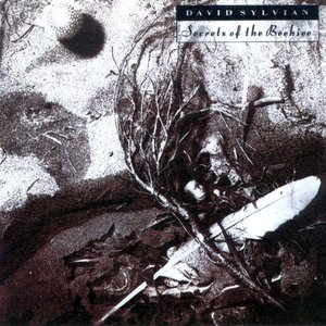 Image for 'Secrets of the Beehive (Remastered 2003)'