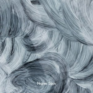 Image for 'Naive Spin'
