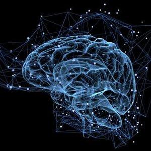 Image for 'Alpha Brain Waves'