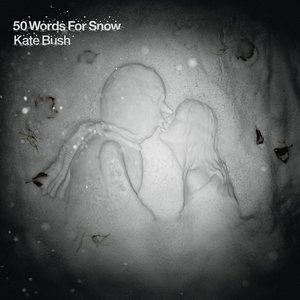 Image for '50 Words for Snow'