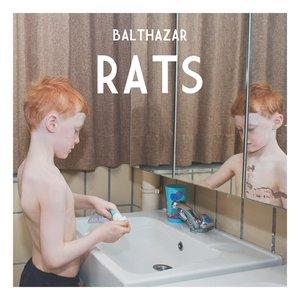 Изображение для 'Rats'