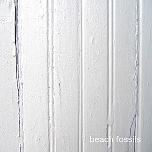 Image for 'Beach Fossils'