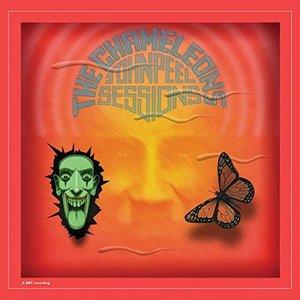 Image for 'John Peel Sessions (2014 Remaster)'