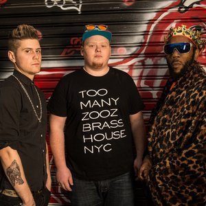 Image for 'TOO MANY ZOOZ'