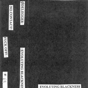 Image for 'Evoluting Blackness'