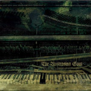 Image for 'Piano and Stump'