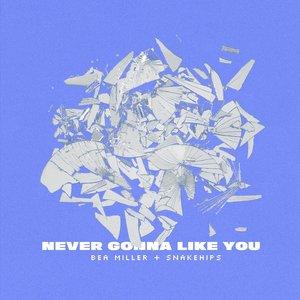 Imagen de 'NEVER GONNA LIKE YOU'