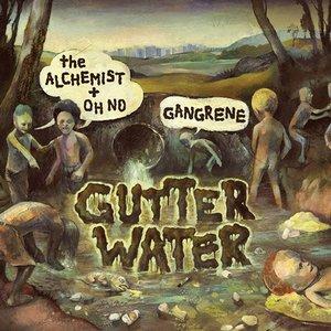 Изображение для 'Gutter Water'