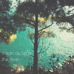 Image for 'The Diver'