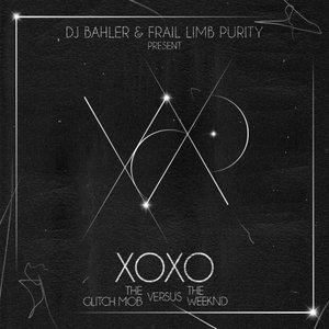 Image for 'DJ Bahler & Frail Limb Purity'