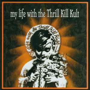Image for 'My Life With The Thrill Kill Kult'