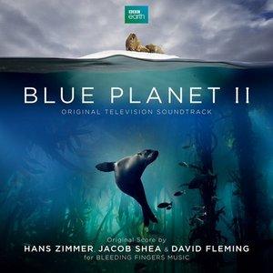 Image for 'Blue Planet II (Original Television Soundtrack)'