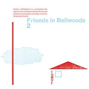 Bild für 'Friends in Bellwoods 2'